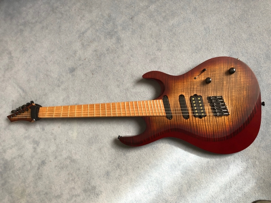 Annonce occasion, vente ou achat 'KIESEL ARIES MULTISCALE 6'