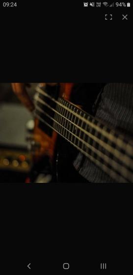 Annonce occasion, vente ou achat 'Bassiste'