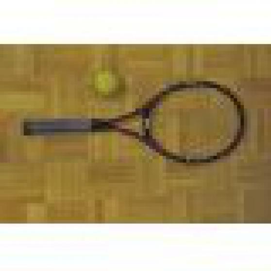 Annonce occasion, vente ou achat 'raquette donnay composite'