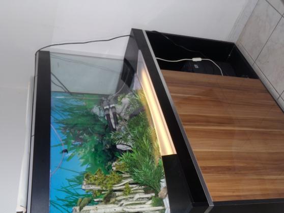 Annonce occasion, vente ou achat 'grand aquarium'