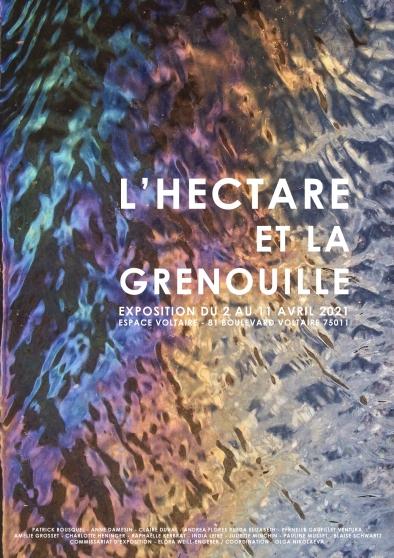 Annonce occasion, vente ou achat 'L'HECTARE ET LA GRENOUILLE'