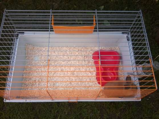 plusieurs cages rongeurs