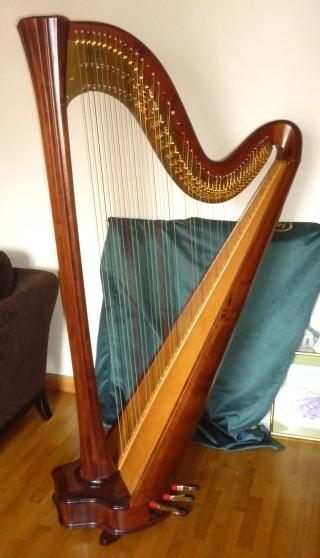 harpe occasion salvi. Black Bedroom Furniture Sets. Home Design Ideas