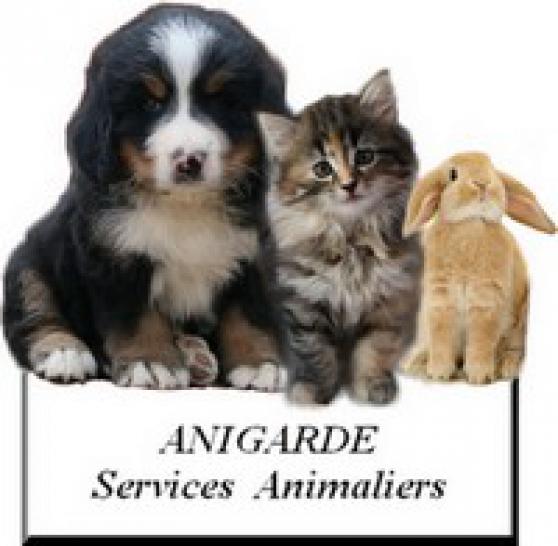 anigarde : services pour animaux landes - Annonce gratuite marche.fr