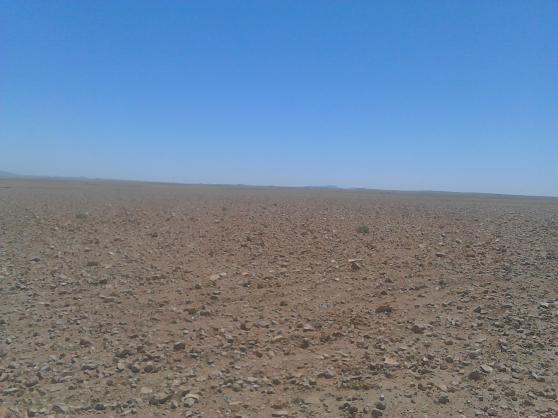 Terrain titré 1009 hectares à vRhamna