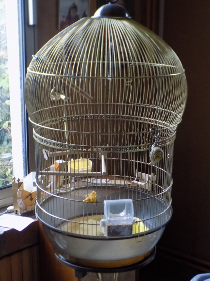 Belle grande cage a oiseaux