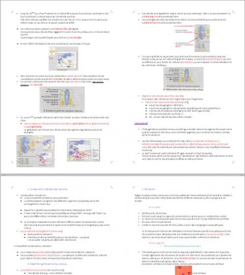 cours de medecine pdf gratuit