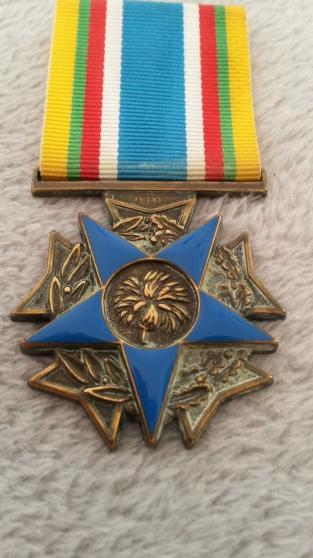 Médaille des combattants des moins de