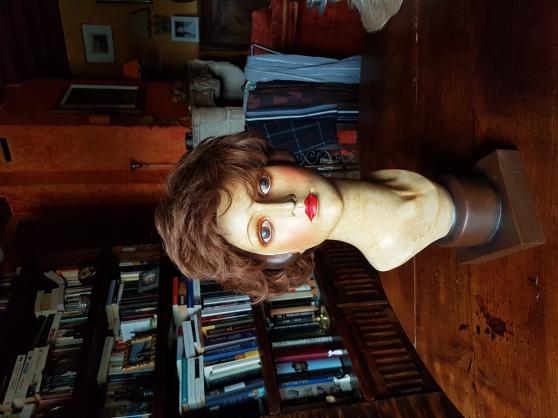 Annonce occasion, vente ou achat 'Perruque femme Ellen Wille'