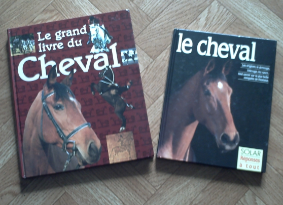 Livres sur le Cheval