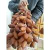 exportation des dattes tunisiennes - Annonce gratuite marche.fr