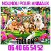 nounou pour animaux sur toulon - Annonce gratuite marche.fr