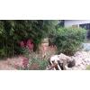 campe dans mon jardin région de melle à melle - Annonce gratuite marche.fr