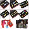 Badges Des Differentes Ligues Pokemon