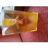 AMARIGE collector 2005 édition limitée
