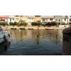 Location Anneau 10 x 3 Port Cogolin
