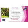 jardinage, entretien propriétés, - Annonce gratuite marche.fr