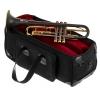 dacarbo toni maier 139r bb- trumpet - Annonce gratuite marche.fr
