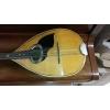 mandoline luigi embergher 1924 roma - Annonce gratuite marche.fr