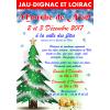 Le marché de Noël de Jau Dignac Loirac