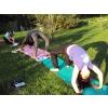 Yoga,Ayurveda et Cuisine Indienne