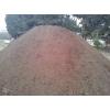 Terre vegetal terreau sable