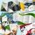 Petite Annonce : 2500 dépliants a4 - création impression - Création intégrale de votre Dépliant A4 • 1 pli central (148 x 210